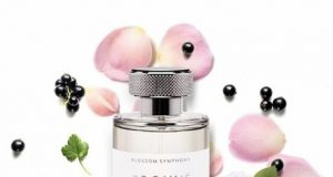 парфюми prouve